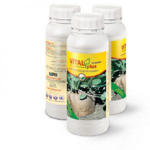 vitalplus-10boron سبز محصول داتیس