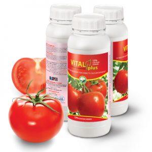 vitalplus-12cal سبز محصول داتیس