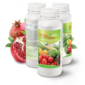 vitalplus-calbor سبز محصول داتیس